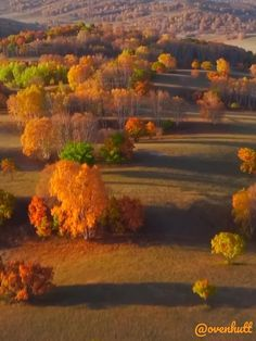 46 Soothing Autumn Landscape Ideas For This Season - With summer winding down, it's about time to think about the landscaping and cleanup projects you can do this autumn in preparation for the upcoming m. Beautiful World, Beautiful Places, Sunflower Pictures, Best Photo Background, Autumn Scenes, Autumn Cozy, Fall Plants, Photo Backgrounds, Natural Wonders