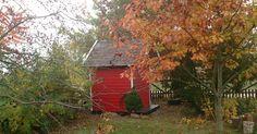 Jesień w ogrodzie jest piękna, o ile znajdą się w nim również drzewa i krzewy liściaste. Projekt: Joanna Paszko Ochotny Homestyling