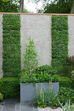 Creative and beautiful outdoor garden wall.  This breaks up the space and adds sound control.