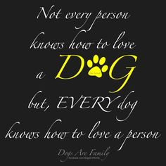 .Every dog knows how to love a person.