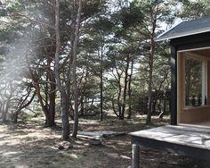Je suis attiré par ces modules d'habitation ou cabanes isolées en pleine nature. De véritables havres de paix que les architectes aiment réinterpréter. Dans le Journal du Design, nous vous avons déjà présenté le studio d'architecture parisien Septembre, il est de retour avec cette magnifique cabane en bois auto-construite au milieu des pins sur l'île de Trossö en Suède. Un sauna, une chambre où deux fenêtres encadrent un paysage puissant et poétique : la mer d'un côté, la forêt de l'autre.