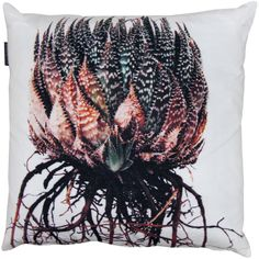 scatter pillows,  printed with very cool photos by  clinton friedman