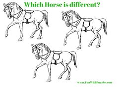 Spot The Difference Picture Brain Teaser of Horse