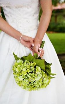 Original bouquet was blue hydrangea, why mess with a good thing!