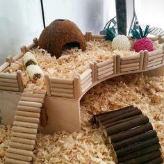 Hampus the hamster's platform. Thanks Pinterest for the inspiration!