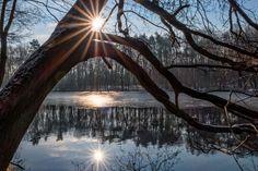 blendenstern-sonnenstern