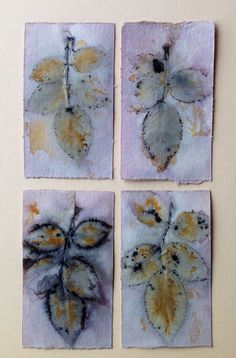 Rose Eco prints on paper by Marilyn Stephens artist. Plant Painting, Diy Painting, Natural Dye Fabric, Natural Dyeing, How To Dye Fabric, Fabric Art, Fabric Dyeing Techniques, Paper Art, Paper Crafts