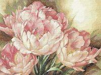 Gallery.ru / Фото #11 - DIM Tulip Trio - elypetrova