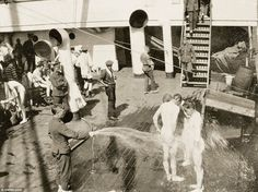 The rapid spread of diseases, a lack of clean water and food meant soldiers often suffered from low morale. This image shows the measures taken to prevent the spread of diseases like dysentry, including soldiers being hosed down on the deck World War One, First World, Waves After Waves, Last Battle, No Mans Land, Anzac Day, Beach Pictures, Image Shows, Wwi