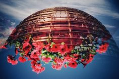 Fotografia analógica de Reichstag (Berlin) + Jardin Luxemburg (Paris) por Jorge Sato. | Analog photography of Reichstag (Berlin) + Jardin Luxemburg (Paris) by Jorge Sato.