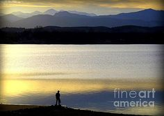 Silhouettes of Fishing - 5 by Diane M Dittus