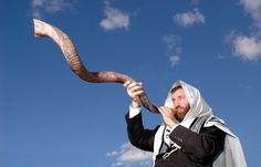 דוד שופר | דרכי עצים