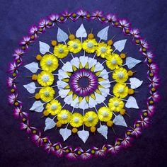 purple /  yellow  / Kathy Kleins Flower Mandalas