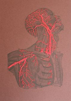 Torso and Head Anatomy Paper Embroidery by FabulousCatPapers