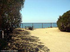 San Elijo Beach State Beach Camping Site 151