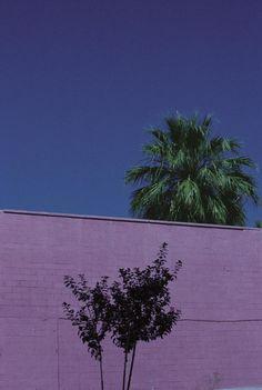 Photo & Contemporary - Urban Landscape, Phoenix