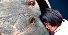 New Okja Trailer Is E.T. Meets Goonies with an Eco-Terrorist Twist -- A young girl tries to protect a gentle yet gigantic creature from greedy corporate interests in the third trailer for Okja. -- http://movieweb.com/okja-trailer-3-netflix-movie/