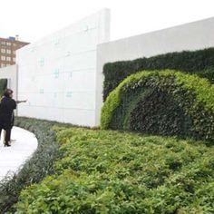 Green Living Wall Gallery | Green Living Technologies Vertical Garden Plants, Living Roofs, Plant Wall, Growing Plants, Sidewalk, Gallery, Green, Design, Roof Rack