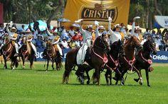 caballos_en_accion3.jpg (619×386)