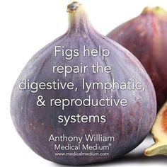 Nutrition tip: figs Natural Health Remedies, Herbal Remedies, Natural Remedies, Healing Herbs, Natural Healing, Natural Medicine, Herbal Medicine, Health Facts, Health And Nutrition