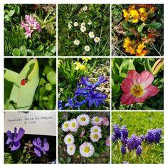 Plants, Jewelry, Jewlery, Jewerly, Schmuck, Jewels, Plant, Jewelery, Fine Jewelry