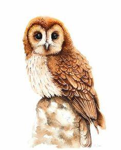 OWL, bird, birds, animals, wildlife watercolour painting Watercolour by Karolina Kijak Owl Watercolor, Watercolor Animals, Watercolor Paintings, Owl Paintings, Owl Illustration, Watercolor Illustration, Bird Artists, Bird Drawings, Artwork Drawings