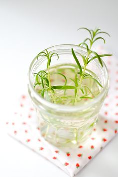 Rosemary Simple Syrup | ateaspoonofhappiness.com