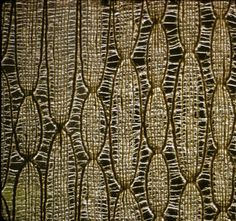 [untitled] :: Your Portable Museum Collection Textile Fiber Art, Textile Artists, Textures Patterns, Color Patterns, Fibre And Fabric, Weaving Textiles, Weaving Projects, Museum Collection, Weaving Techniques