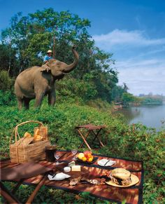 The Four Seasons Tented Camp -Thailand