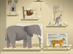 Mammals van TinyBop