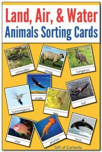 Printable set of Montessori land, air, and water animals sorting cards. Great for early geography lessons focused on air, land, and water. || Gift of Curiosity