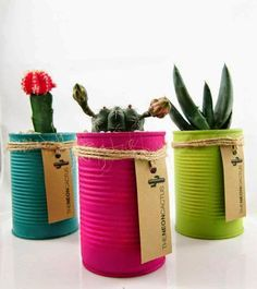Cactus in a Can A great gift idea. These ones you can buy from The Neon Cactus. Poppytalk: 10 DIY Plant Ideas for Fall. Kaktus in plantenbak blik Cactus Types, Cactus Plants, Indoor Cactus, Cactus Art, Indoor Plants, Neon Cactus, Tin Can Crafts, Easy Crafts, Creative Crafts