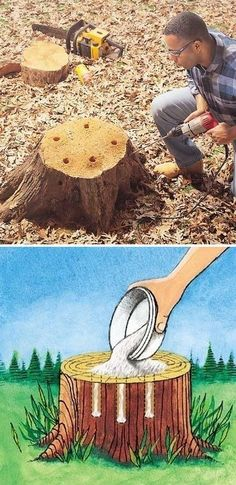 Tree Stump Removal Get rid of tree stumps by drilling holes in the stump and fi. - Getting Outside (camping, picnics and the backyard) - Outdoor Projects, Garden Projects, Garden Ideas, Garden Tools, Easy Garden, Diy Projects, Project Ideas, Stump Removal, Front Yard Landscaping