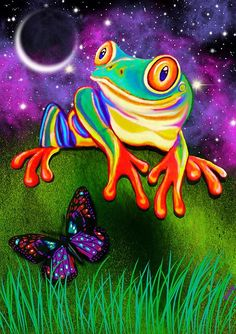 A red eyed tree frog and butterfly with a starry night