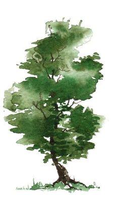 árvores da aguarela - Google Search por debbie.rose.37