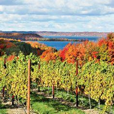 Best Coastal Wine Vacations - Coastal Living