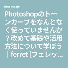 Photoshopのトーンカーブをなんとなく使っていませんか?改めて基礎や活用方法について学ぼう ferret [フェレット]