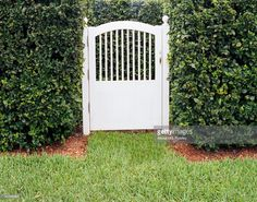 White garden gate flanked by hedges and lined with red mulch Garden Front Of House, House Front, Garden Entrance, Entrance Gates, Rustic Gardens, White Gardens, Garden Hedges, Garden Gate, Picket Gate