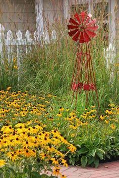 Black eyed susan and ornamental grass