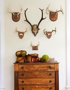 Antlers, fishing creels & antique chest - in the Adirondacks - interior designer Ann Stillman O'Leary's mountain home - rustic, yet sophisticated Deer Horns, Elk Antlers, Trophy Rooms, Antique Chest, Metal Tree Wall Art, Lodge Style, Man Room, My Living Room, My New Room