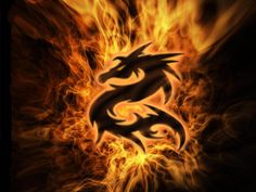 fire dragon Dragon pictures Dragon images Fire art