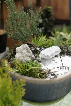 A miniature Zen garden. @Melissa Squires Squires Stevens for your fairies to relax- to add to our fairy corner under trellis