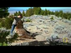 Casey Anderson and Brutus the Bear - YouTube
