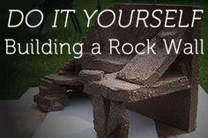 DIY: Building A Reptile Rock Wall                                                                                                                                                                                 More