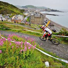 #Day97 of #100HappyDays – of #Faberystwyth: May Picture of the Month Winner ==================== #Diwrnod97 of #100DiwrnodHapus - #Ffaberystwyth: Mai, ennillydd cystadleuaeth llun y mis #aberystwyth #wales #bike #mountain #sea
