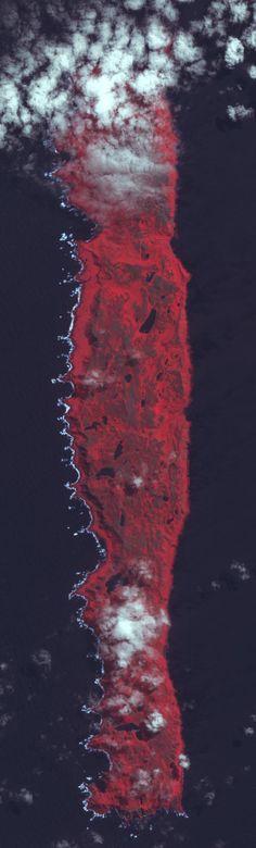Macquarie Island, Australia