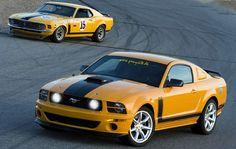 TransAm Mustang News