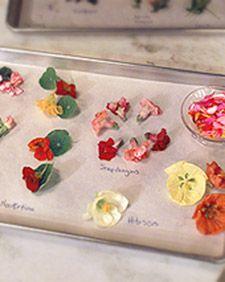 Edible Flowers   Recipes, Crafts & Home Décor   Martha Stewart
