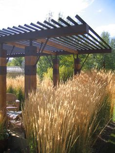 Great arbor by Ben Young Landscape Architect