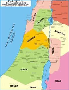 Palestina en tiempos de Jesús Mapa político Jeremiah Study Bible, Map Symbols, Revelation Bible, Israel History, Bible Mapping, Bible Study Notebook, Bible Resources, Bible Knowledge, Bible Scriptures